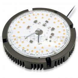 Modulo LED 110~120Vac MT193